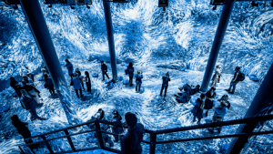 submerge Immersive Installation